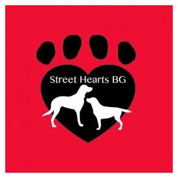 Charity Donation Street Hearts BG