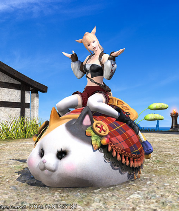 ffxiv-prizes-for-cancer-charity-67582.png