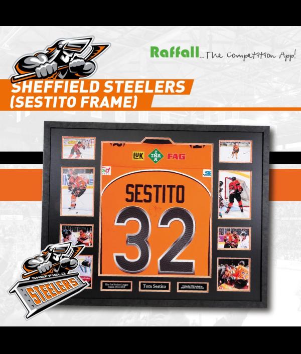 #32-sestito-framed-shirt-103435.png