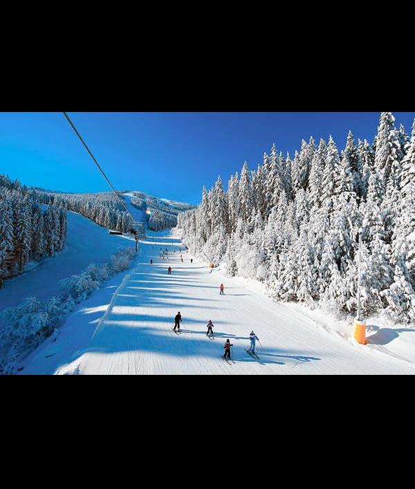 dream-ski-apartment-159258.png