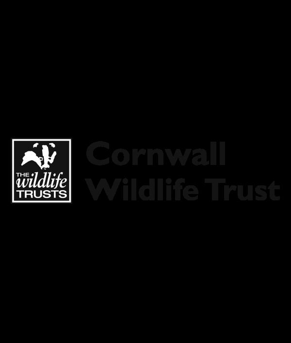 a4-wildlife-print-+-3-wildlife-card-122377.png