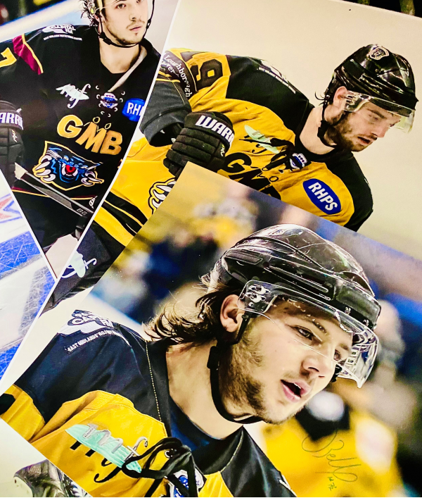 special-panthers'-banners-169201.png