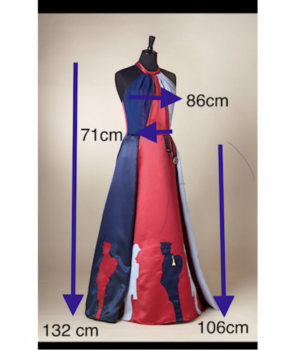 pippa's-help-for-heroes-dress-171104.png